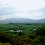 La Marjal natural Park