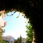 Bellavista Gardens